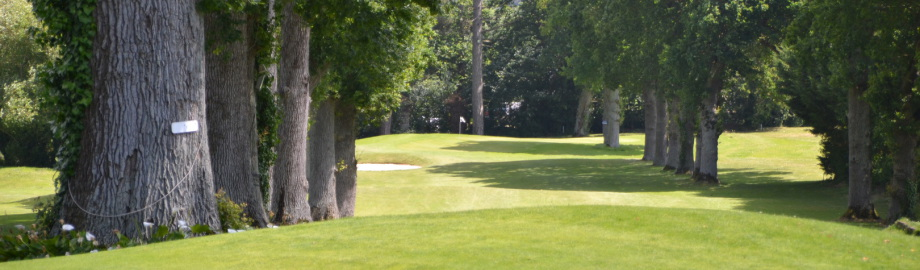 golf de la crini re golf de bretagne parcours 9 trous. Black Bedroom Furniture Sets. Home Design Ideas